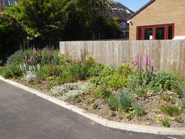 16-Landscaped-garden
